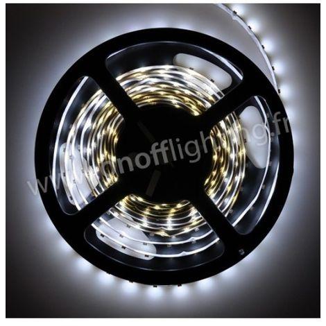 Ruban LED blanc froid 7000K 5W/m (longueur 5m) 12V DC (alim non incl) dimmable 120° intérieur IP20 RUBILIGHT 3528601-70