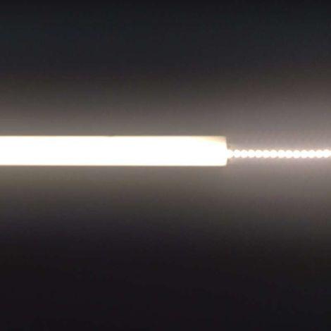Ruban LED Blanc haute luminosité 18W/m 280 LED/m