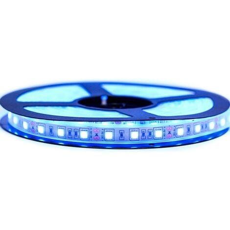 Ruban LED Professionnel 5050 / 60 LED 5 Mètres Bleu Electrique étanche  (IP67)