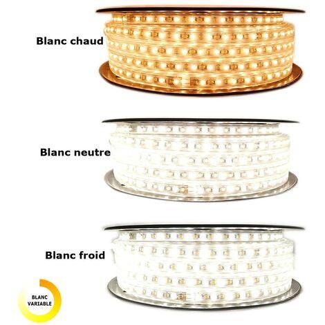 Ruban LED Professionnel EPISTAR 2835 120 LED/m de  25 ou 50 mètres Multi Blanc (IP68)