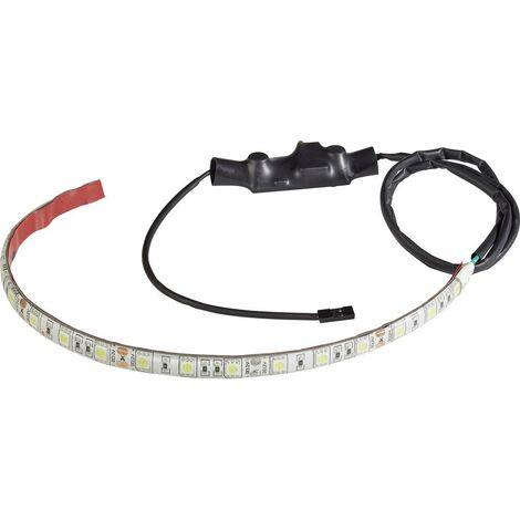 Ruban LED RF500 Renkforce 1553485