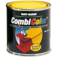 Rust-oleum Combicolor gloss paint 1L (select colour)
