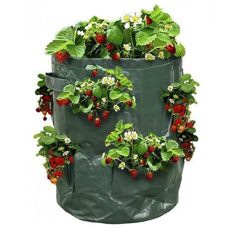 Sac à fraisiers - Sac de plantation pour fraises - X2