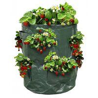 Sac à fraisiers - Sac de plantation pour fraises - X2 Vert 35 cm