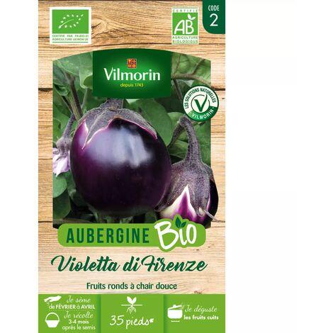 Sachet de graines Aubergine Violette de Florence BIO