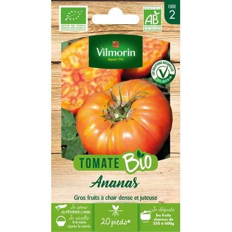 Sachet de graines Tomate Ananas BIO