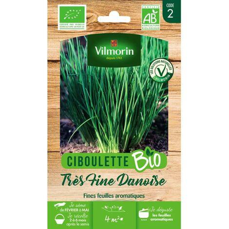 Kitchen Gardening Vilmorin Ciboulette tr/ès fine danoise BIO