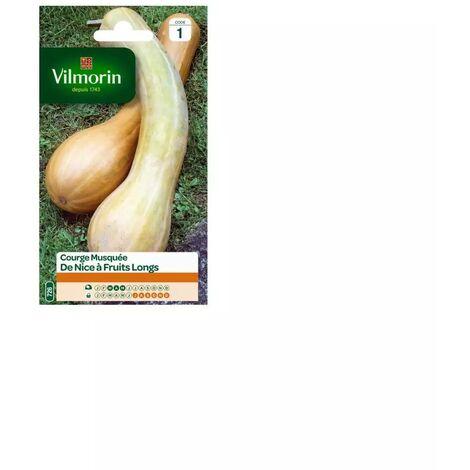 Sachet graines Courge musquée de Nice à fruits longs