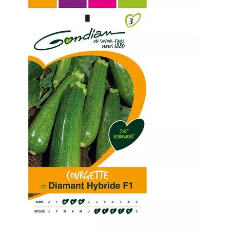 Sachet graines Courgette Diamant HF1 Gondian
