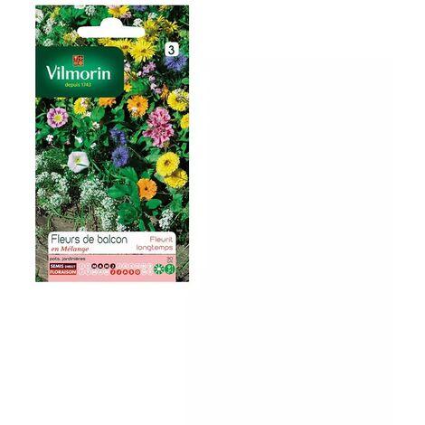 Sachet graines Fleurs de balcon annuelle en mélange