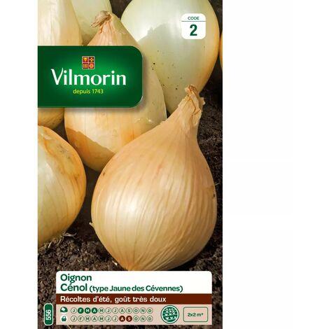 Sachet graines Oignon Cénol ( type jaune des Cévennes )