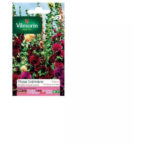 Sachet graines Rose trémière double grande variée