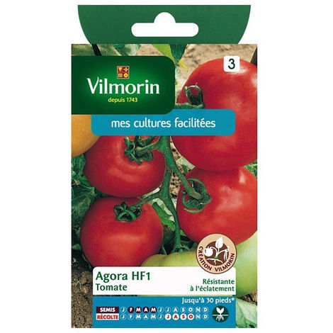 Sachet graines Tomate Agora HF1