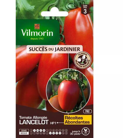 Sachet graines Tomate Allongée Lancelot HF1
