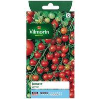 Sachet graines Tomate cerise