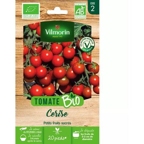 Sachet graines Tomate Cerise BIO - Solanum lycopersicum