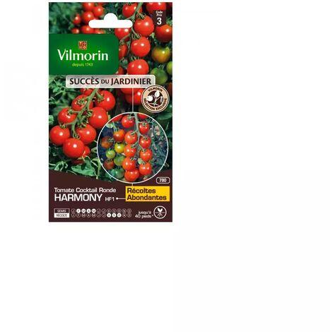 Sachet graines Tomate Harmony HF1