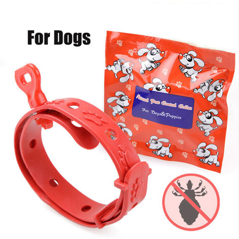 Sangle pour le cou de chat chien collier reglable anti puces, 38cm