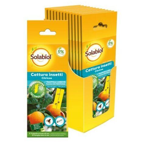 SBM - Solabiol Insecticida para plagas de Cítricos con feromonas (1 pack con 5 trampas)