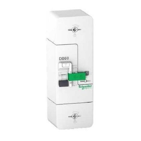 Schneider R9E10245 Disjoncteur Branchement 1P+N 15/30/45A 500mA - Resi9 DB60