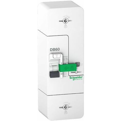 Schneider - Resi9 DB60 - Disjoncteur Branchement - 1P+N - 60A Fixe 500mA - Sélectif - Réf : R9FS660
