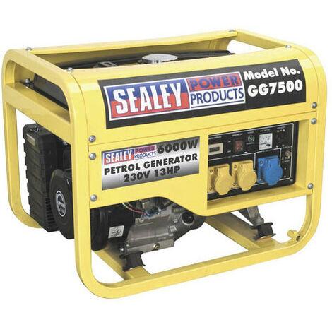 Sealey GG7500 6000W 110/230V Generator 13hp