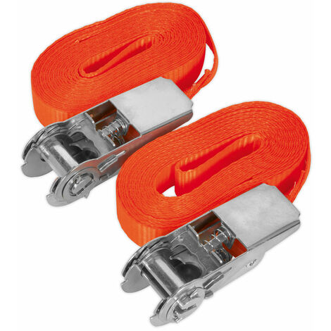 Sealey TD08045E Self-Securing Ratchet Tie Down 25mm x 4.5m 800kg Load - Pair