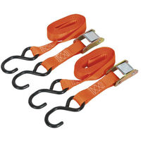 Sealey TD2525CS 25mm x 2.5mtr Polyester Webbing Cam Buckle Tie Down with S Hooks 250kg Load Test