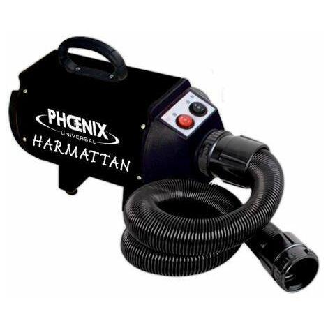 Sechoir harmattan noir 2 vitesses portable 2200w dispo debut 10/20