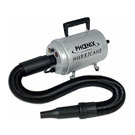 Sechoir pulseur hurricane portable 2400w