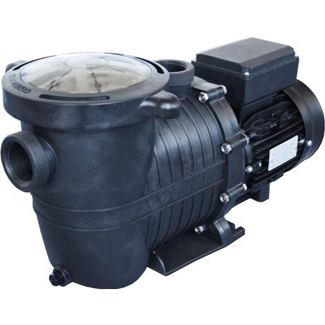 Selbstansaugende Pumpe 1 PS mit Vorfilter - 18 m3/h