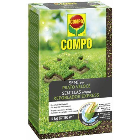 """Seme """"Prato Veloce"""" rigenerazione tappeto erboso ripristina aiuola"""