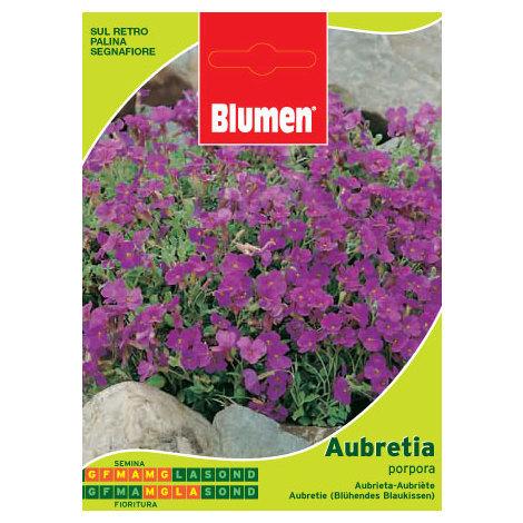 SEMENTI DI AUBRETIA PORPORA giardino semi seeds fiori aiuole blumen