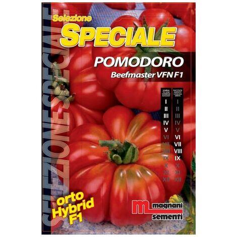 Sementi di Pomodoro Beefmaster