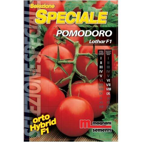 Sementi di Pomodoro Lothar