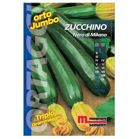 Sementi di Zucchino Nero di Milano Orto Jumbo