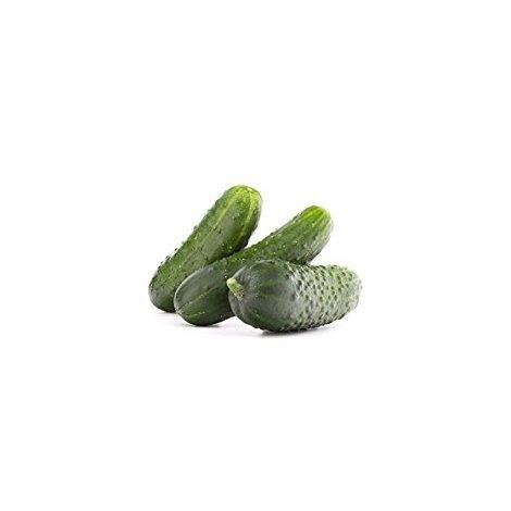 Semi Cetriolo Winsconsin,10 Grammi