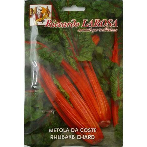 Semi di bietola da coste rhubarb chard buste sigillate sementi orto bietole