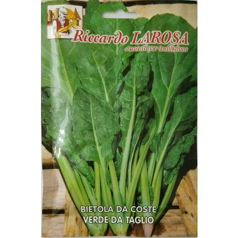 Semi di bietola da coste verde da taglio buste sigillate sementi orto bietole