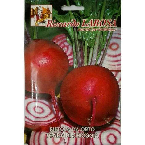 Semi di bietola da orto tonda di chioggia buste sigillate sementi orto bietole