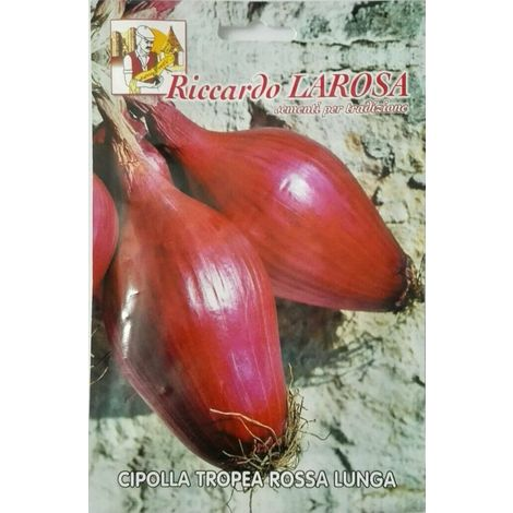 Semi di cipolla tropea rossa lunga buste sigillate sementi orto frutta cipolle