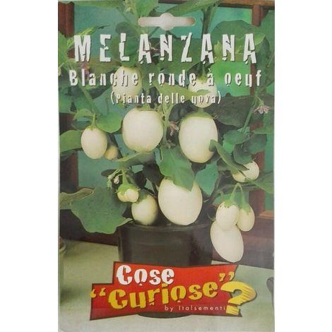 Semi di melanzana bianche pianta delle uova orto giardino balcone