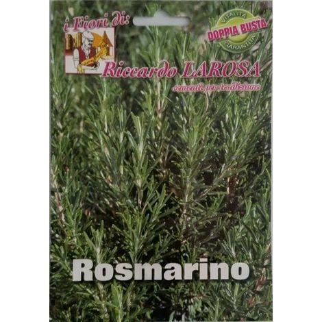 Semi di rosmarino buste sigillate semi di piante aromatiche