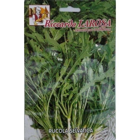 Semi di rucola selvatica buste sigillate semi di piante aromatiche