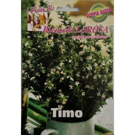 Semi di timo buste sigillate semi di piante aromatiche
