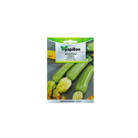 Semi di zucchine chiare (5 grammi) 08093621