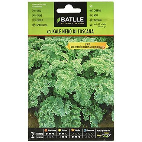 """main image of """"Semi orticole - Col Kale Nero di Toscana - Batlle"""""""