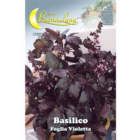 Semi Orto Basilico 'Foglia Violetta' Articolo Da Giardinaggio Conf. 10 Pz