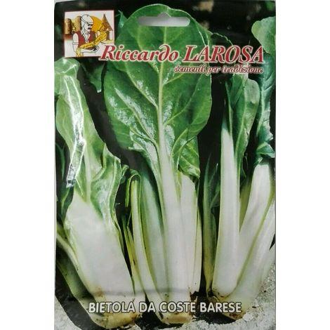 Semi orto bietola da coste barese buste sigillate sementi bietole