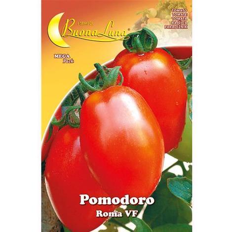 Semi Orto Pomodoro Roma Articolo Da Giardinaggio Conf. 10 Pz